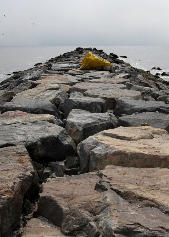 Alternative plan of action : Sea shells © Karoline Hjorth & Riitta Ikonen