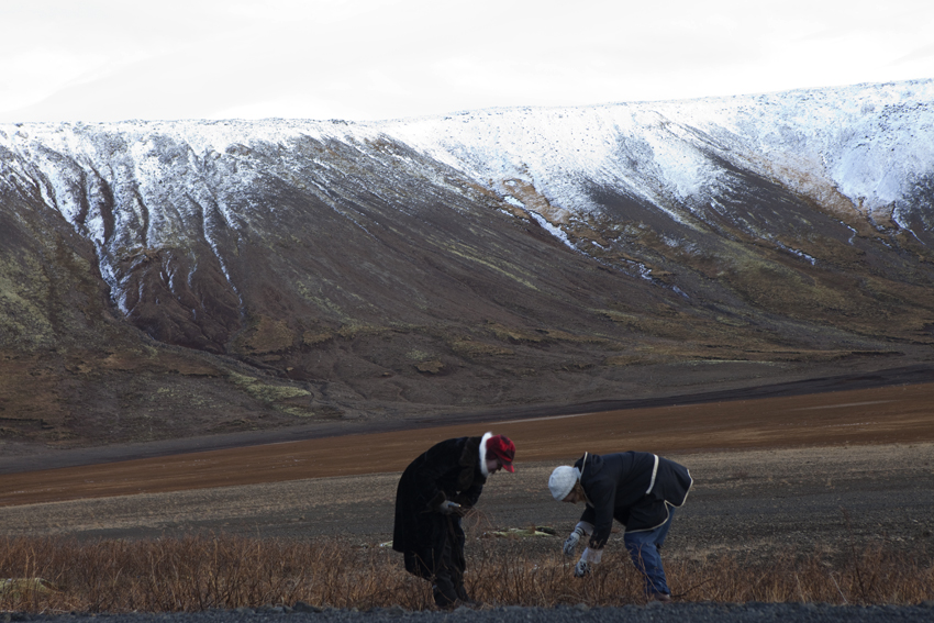 Harvesting for tomorrow's shoot © Karoline Hjorth & Riitta Ikonen