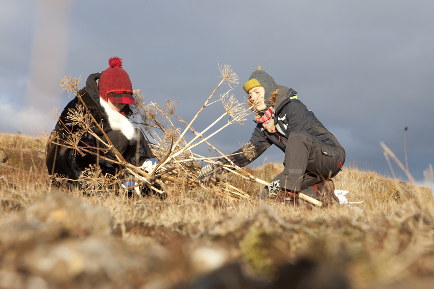 Teamwork © Karoline Hjorth & Riitta Ikonen