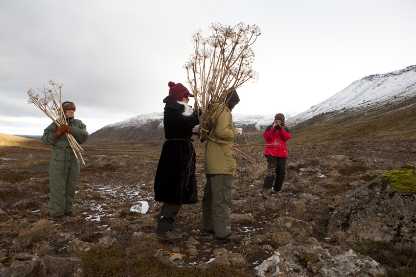 Svana getting ready to face the north wind © Karoline Hjorth & Riitta Ikonen