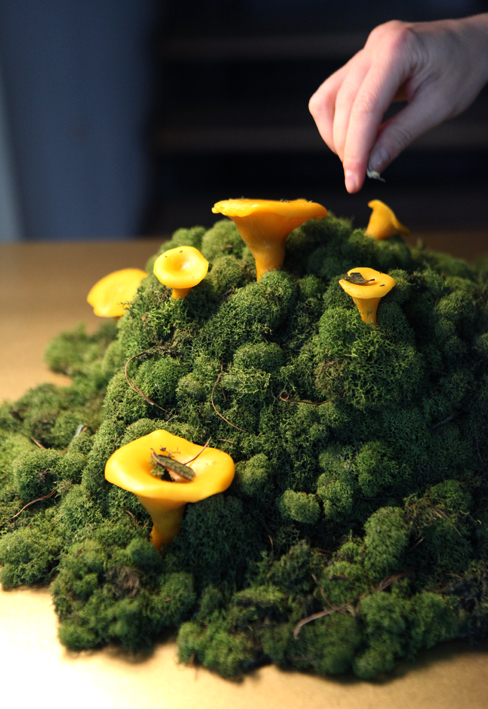 A mountain of chanterelles © Riitta Ikonen & Karoline Hjorth