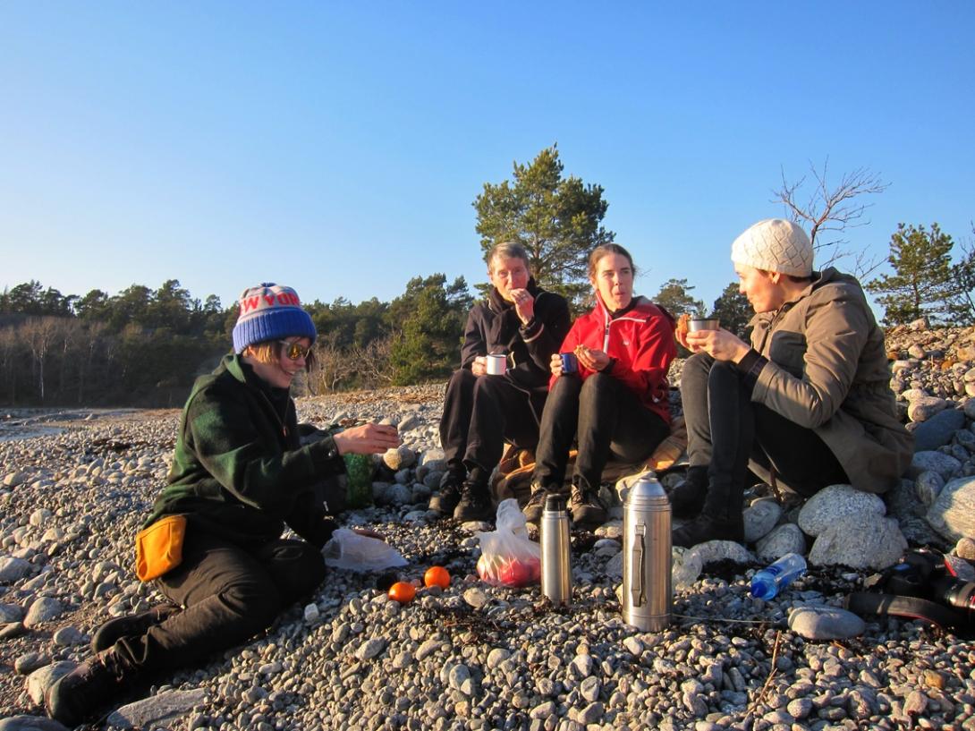 A sunny picnic on a pebble beach ® Karoline Hjorth & Riitta Ikonen